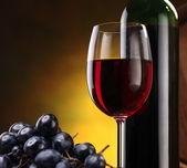 natura morta con bottiglia di vino