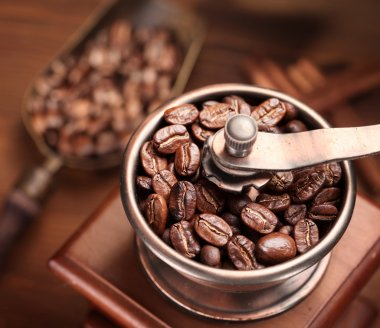 Roasted coffee beans in a coffee grinder.