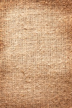 Image texture of burlap.