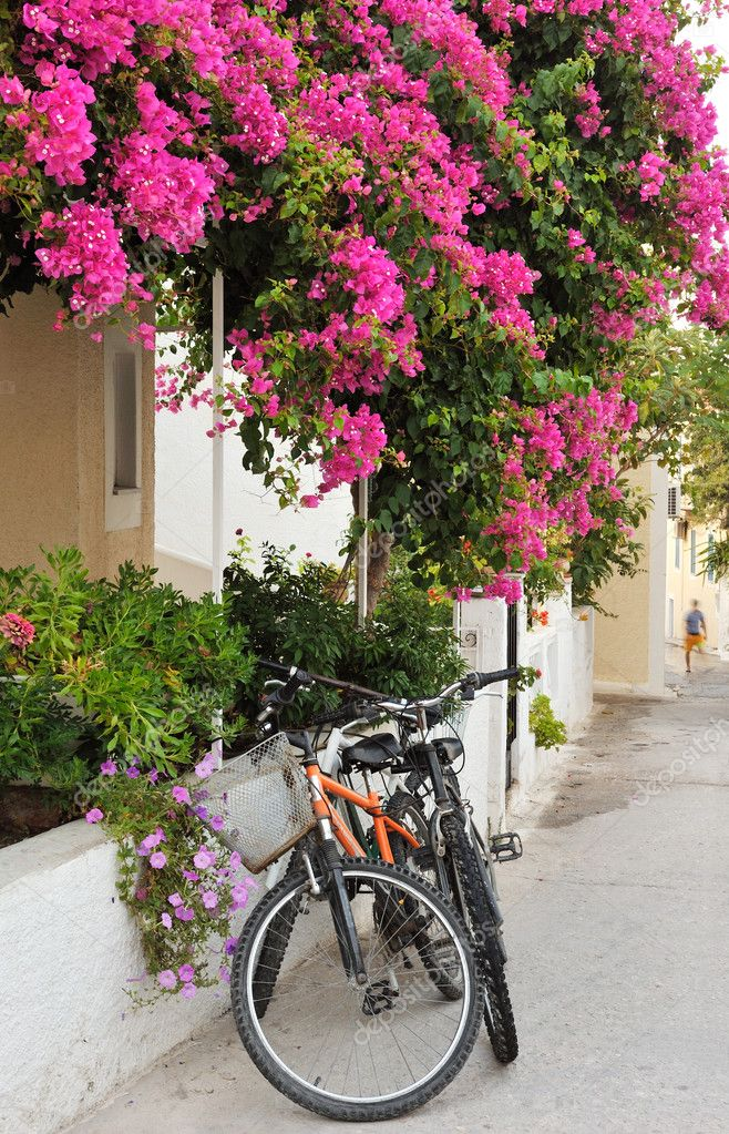 Scene from a narrow alley from a Greek island village, showing two bicycles leaning against a house covered in colorful flowers