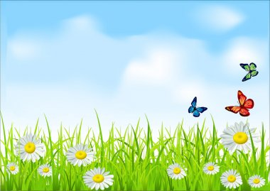 Vector green grass and blue sky with daisies and butterflies