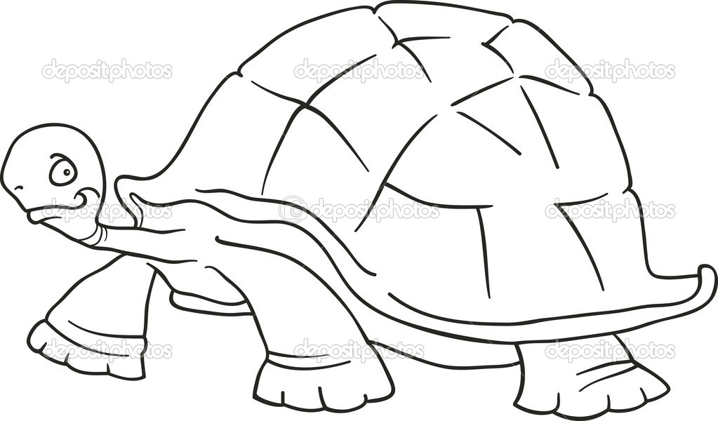 Imágenes: una tortuga gigante animada | tortuga gigante para ...