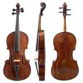 Fényképek régi hegedű oldalán
