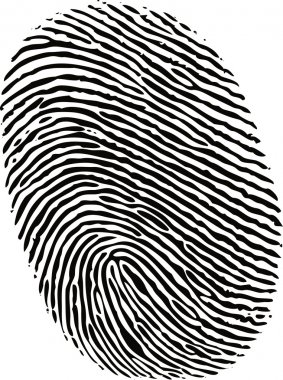 Editable vector fingerprint