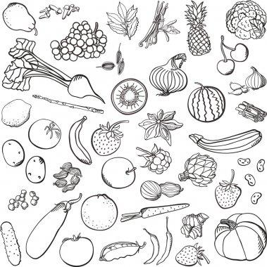 Spices&vegetables&fruits set