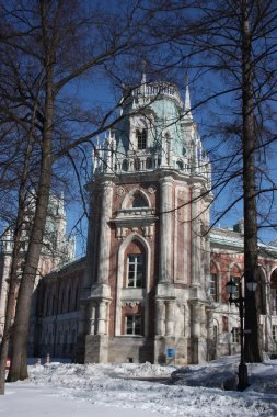 "Moscow. Museum - reserve ""Tsaritsyno"". Large palace, form from the side of"