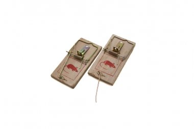 Two mousetraps