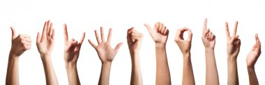 Set of gesturing hands isolated on white background stock vector