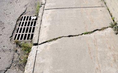 Cracked Urban Sidewalk