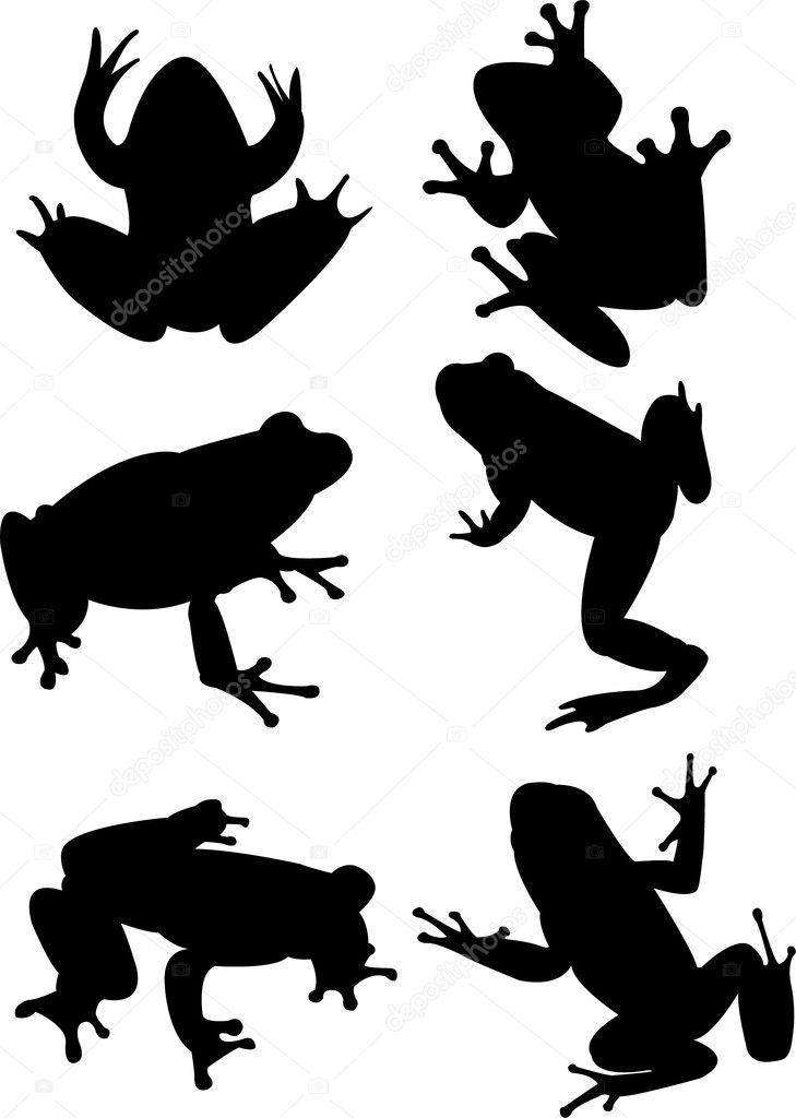 frogs � stock vector 169 paunovic 4051352