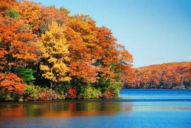 Autumn foliage over lake