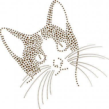Dotted cat