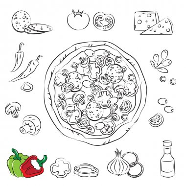 Vector Sketch Collection of Pizza and ingredient