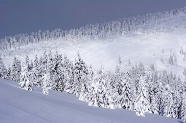 Ski slope covered with deep snow