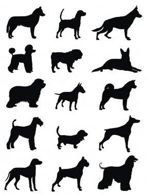 Various dog