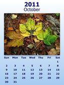 Fényképek október havi 2011 naptár