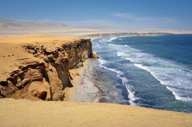 Ocean view in Paracas, Peru