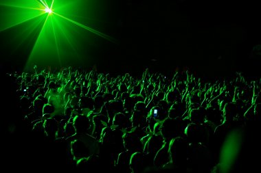 Fan at concert