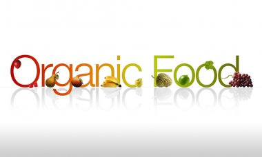 Organic Food graphic with fruits and vegetable ornaments. stock vector
