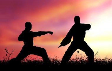 Mixed Martial Artists