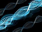 DNA abstrakt