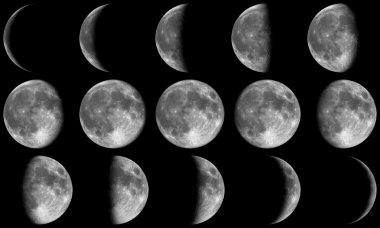 Full Moon Phases - grey