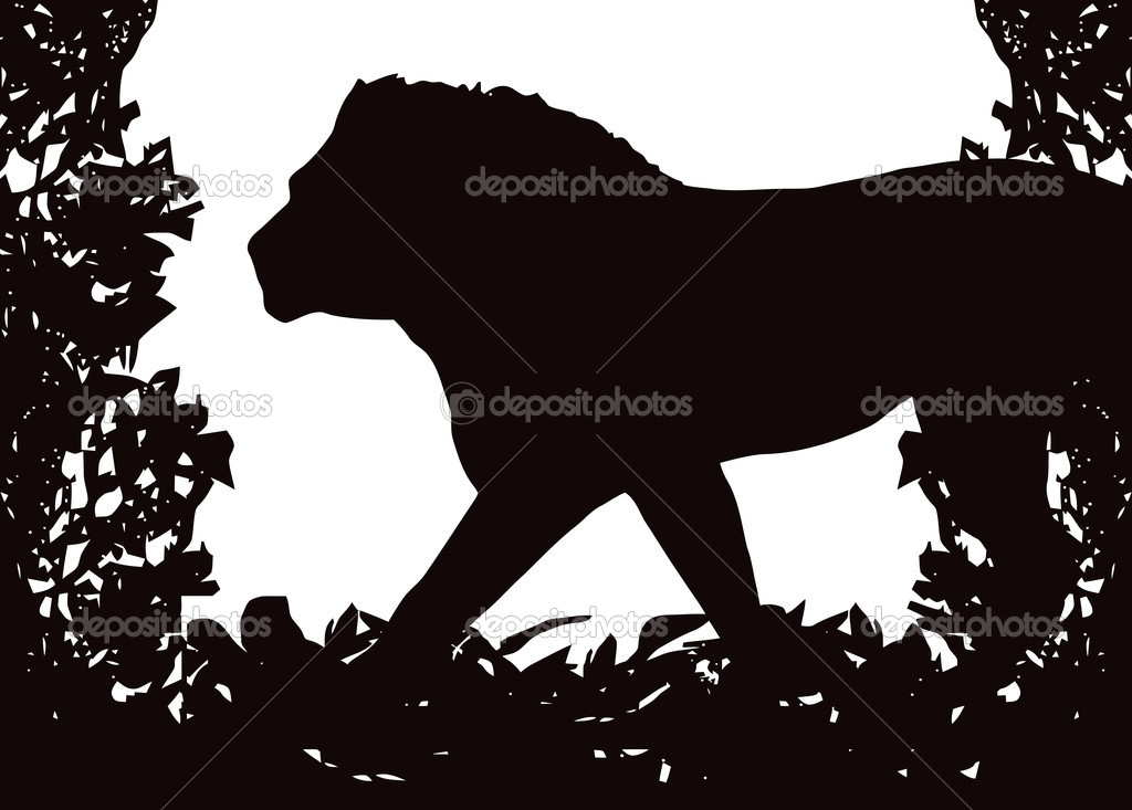 Leão no quadro vector de arbusto isolado u2014 vetores de stock © cd123