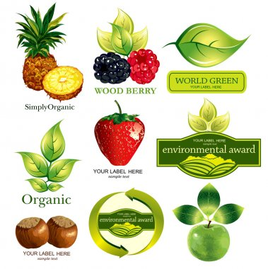 Vector set fruits and ecological emblems