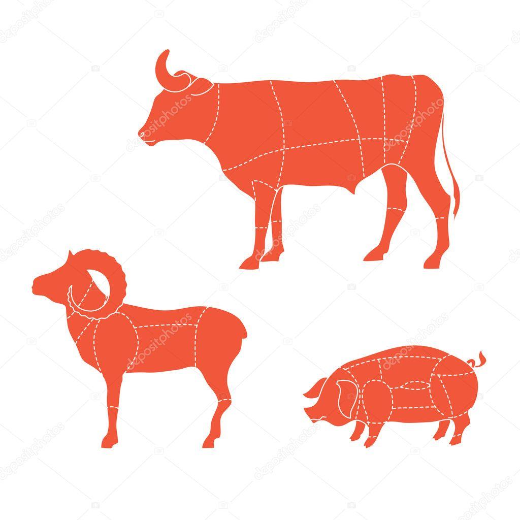 cortes-vaca-cordero-cerdo — Archivo Imágenes Vectoriales ...