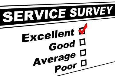 Excellent Customer Service Survey