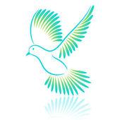 Fényképek Logo madár. galamb. vektoros illusztráció