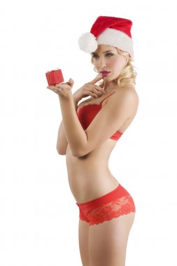 Sexy santa claus in red lingerie