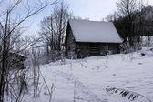 capanna di legno