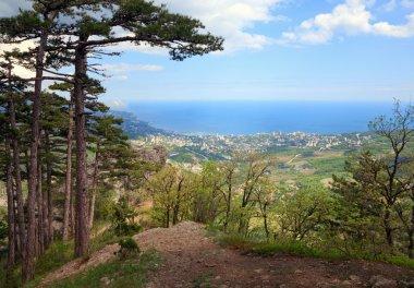 View of Yalta city from slope of Aj-Petri Mount (trail Botanical, Crimea, Ukraine)