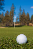 Golf zblízka