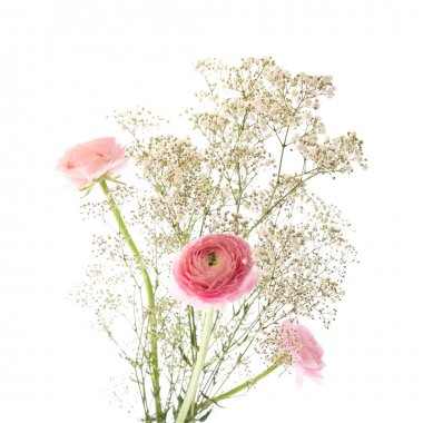 Simple bunch of Gypsophila (Baby's-breath) and pink Ranunculus (Persia