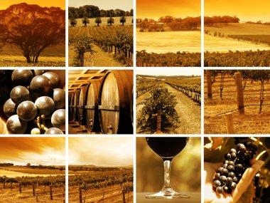 Wine Montage