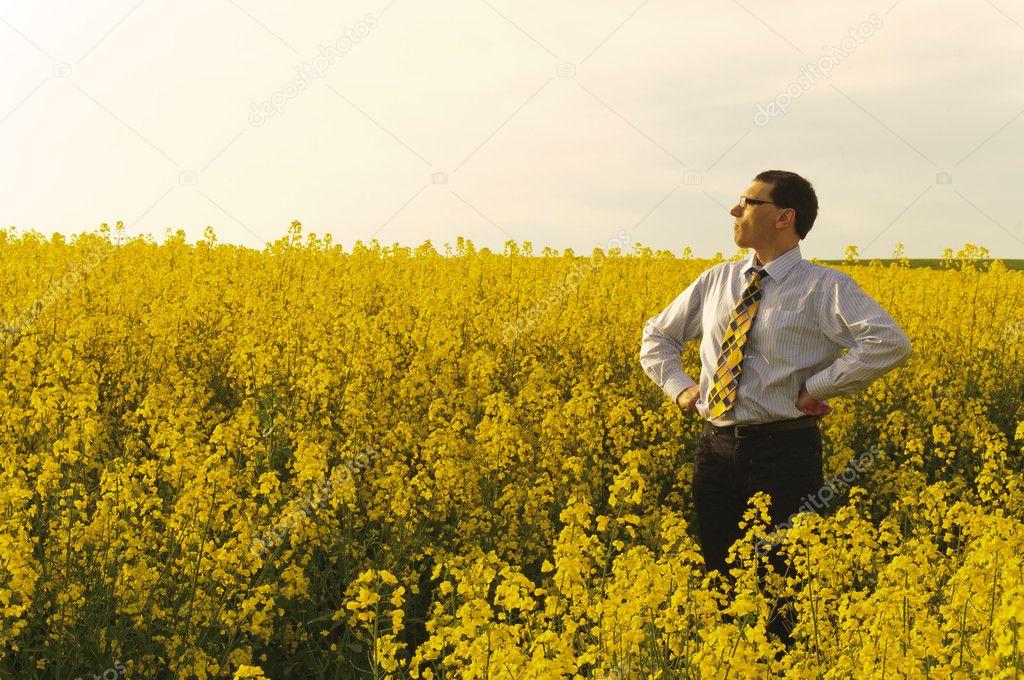 Manager in flowering rape field