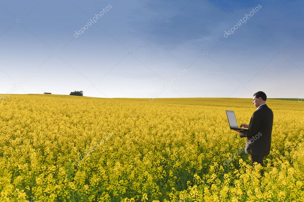 Manager in flowering rape field