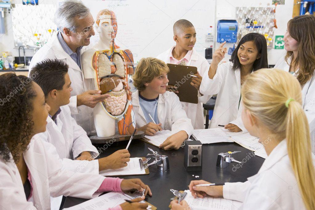 niños de la escuela y su maestra en una clase de Ciencias de ...