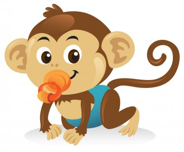 Baby Monkey With Pacifier