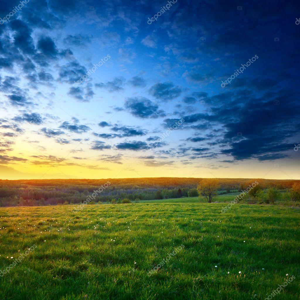 Фотообои Spring sunset