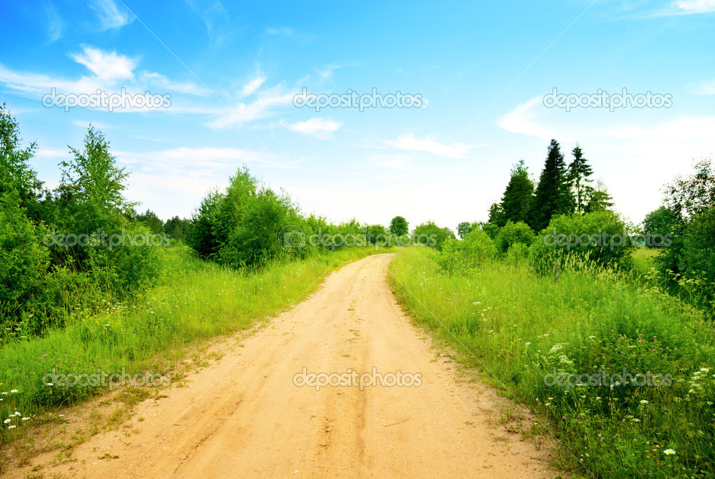Road and perfect summer day