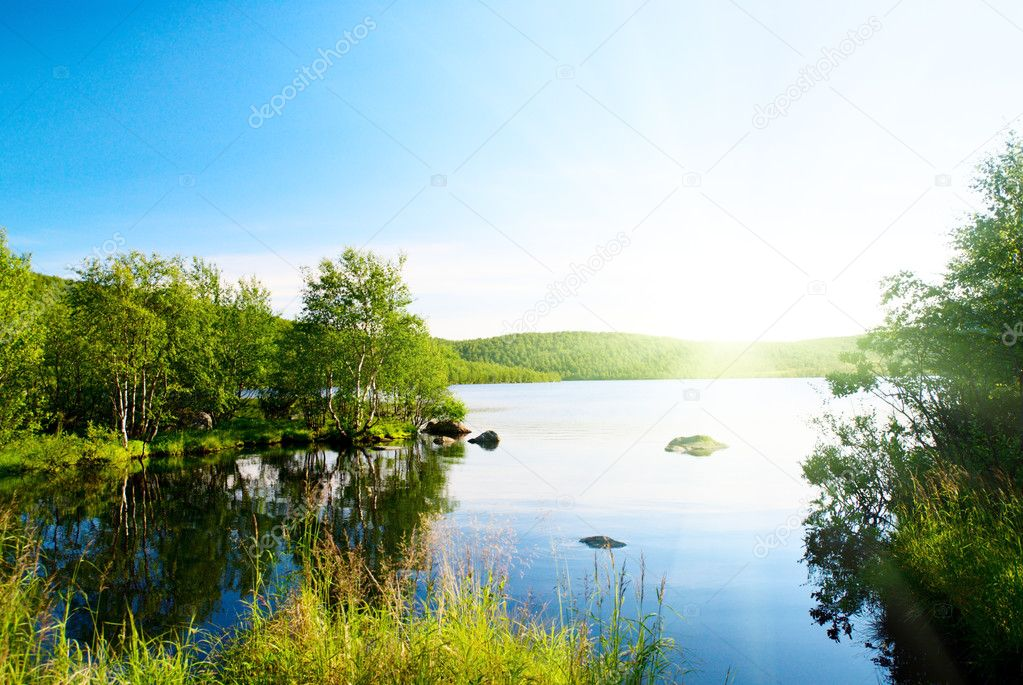 Taiga and lake