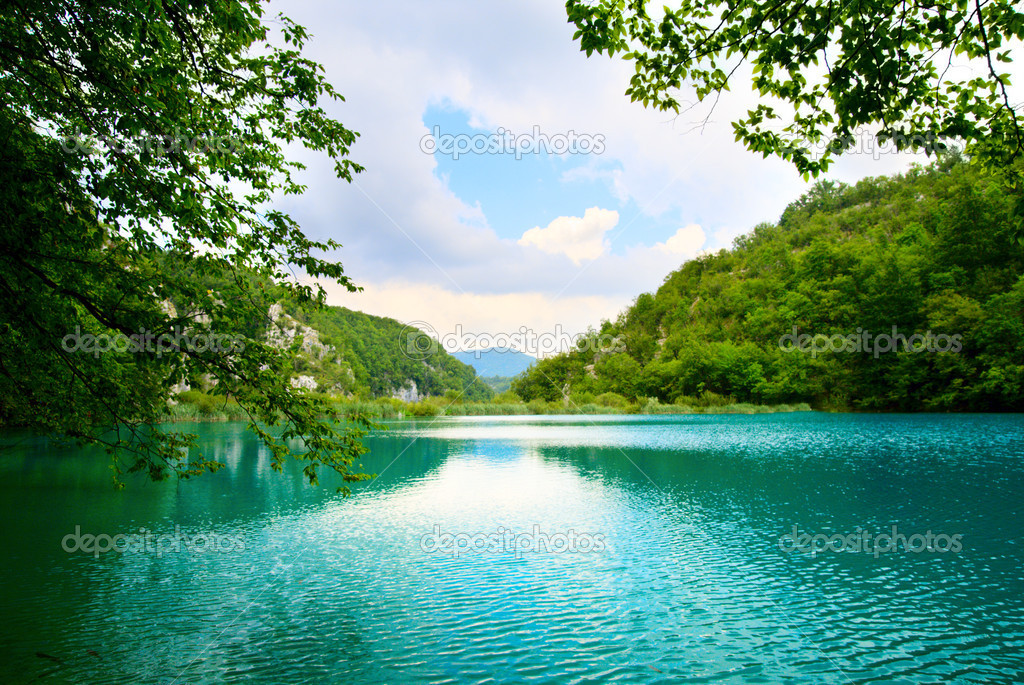 Фотообои Lake in deep forest