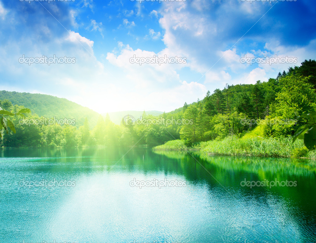 Green water lake in forest stock vector