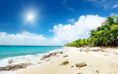 Beach of Catalina island, Dominican republic