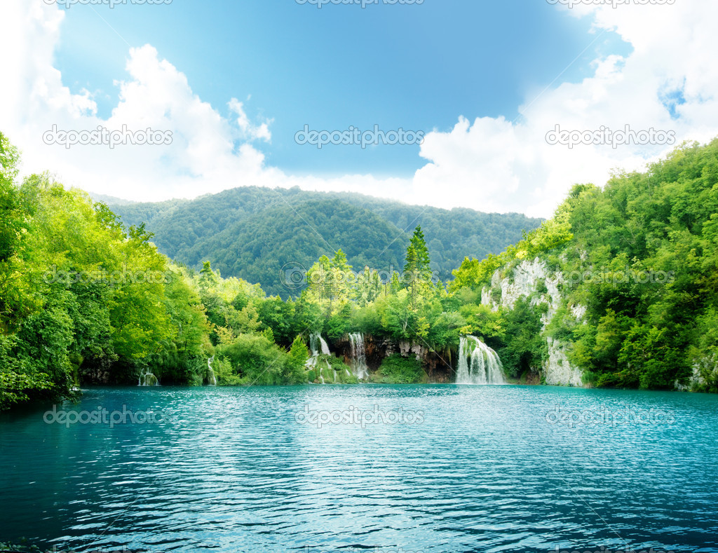 Фотообои Lake in deep forest