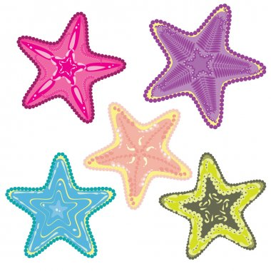 Set of colorful starfishes