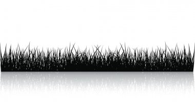 Vector Black Grass